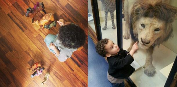 small boy birthday Lion King theatre trip