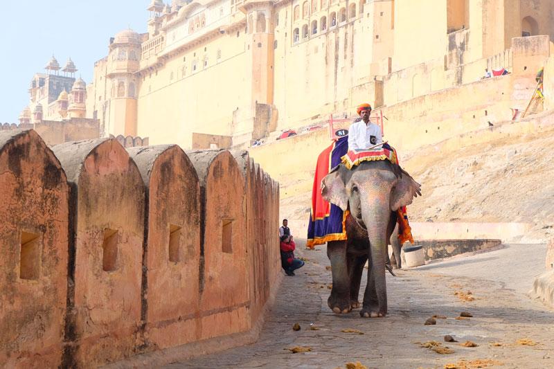 man riding Indian elephant through town