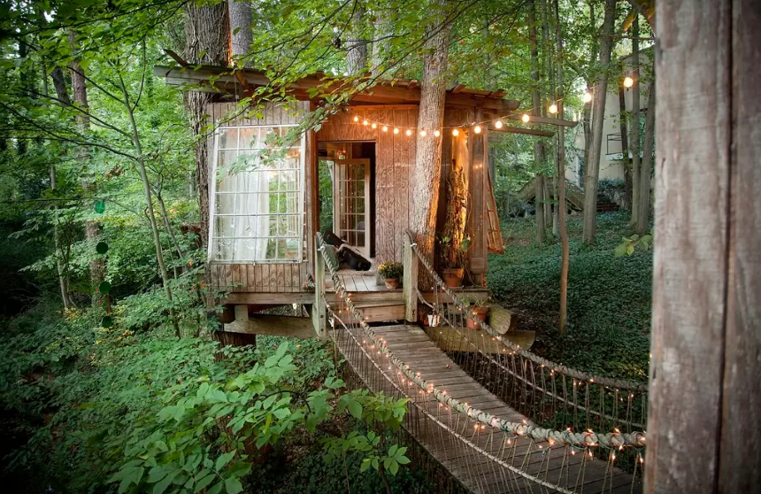 Sharing Economy Airbnb tree house