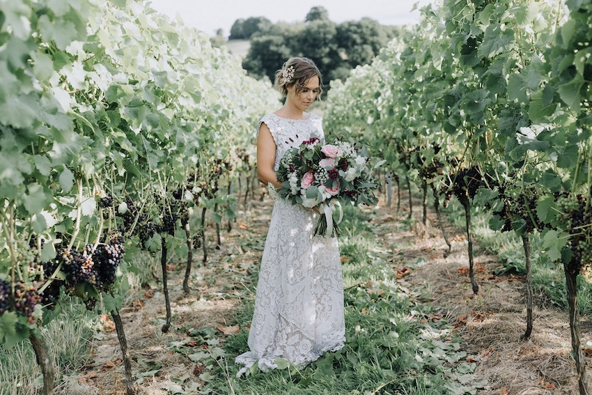 Bride holding bouquet standing between vines with dark grapes on