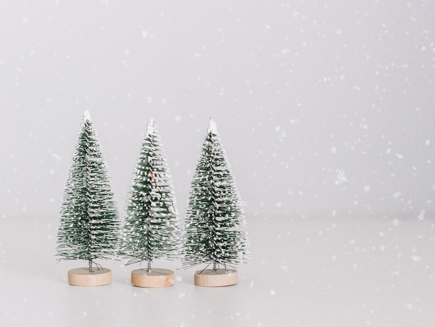 three tiny snow covered fir tree decorations